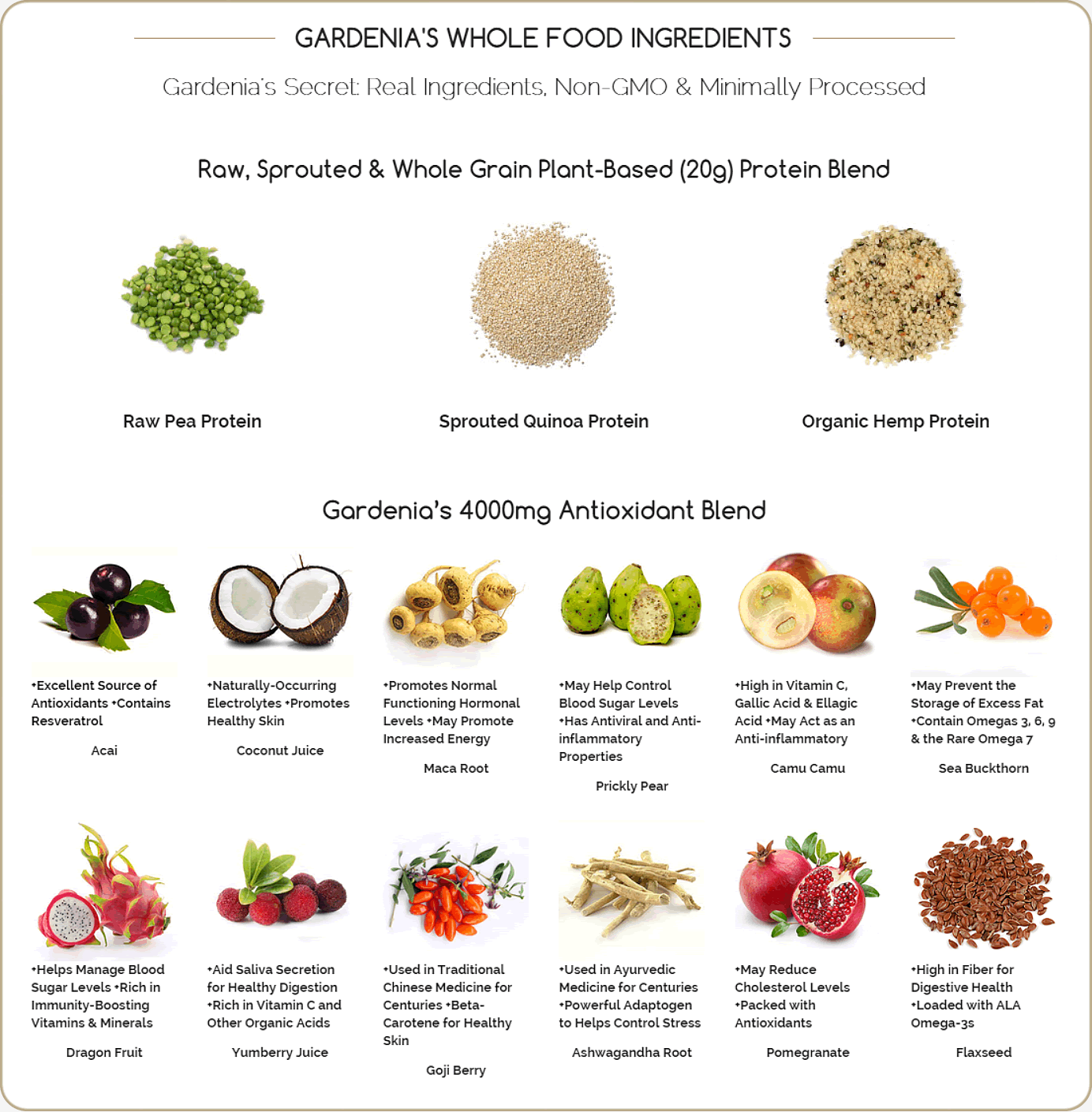 Best Natural Food Sources Protein