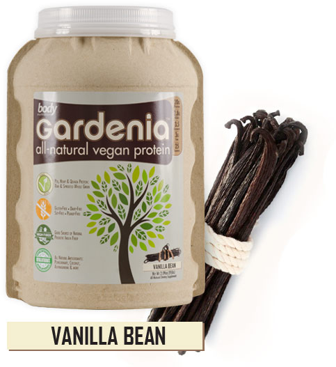 Body Nutrition Vanilla Bean flavour Gardenia Vegan Protein